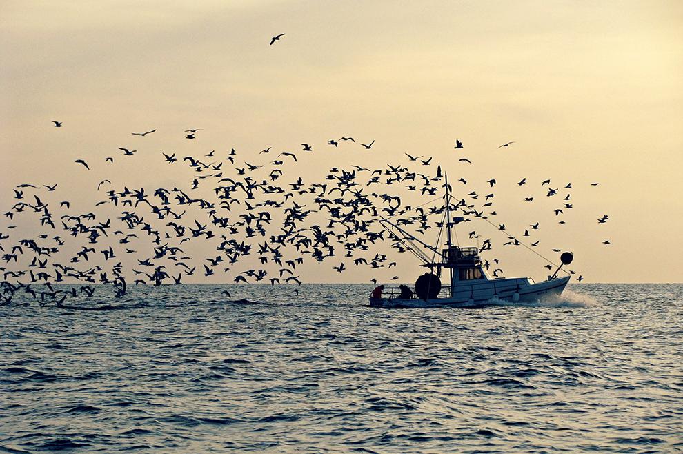 Na moru...