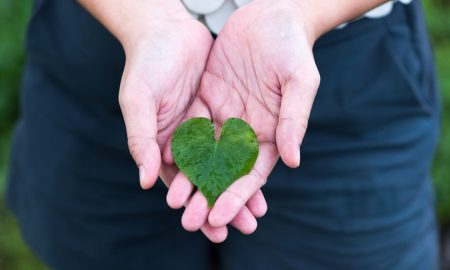 4 navike za obnovu našega srca