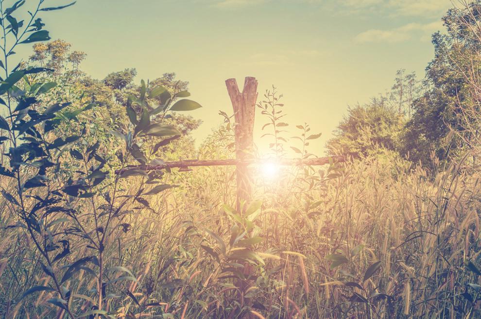 4 'stvari' koje propuštamo kada ne živimo u sadašnjem trenutku
