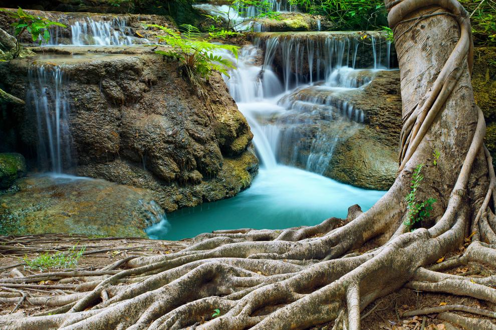 9 korijena otrovnih povezanosti s grijesima naših predaka. Što učiniti s njima?