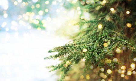 Priča koja će nas podsjetiti na istinsko značenje Božića