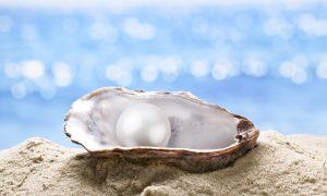 U svijetu punom kamenja, pronađi školjku koja u sebi nosi najljepši biser