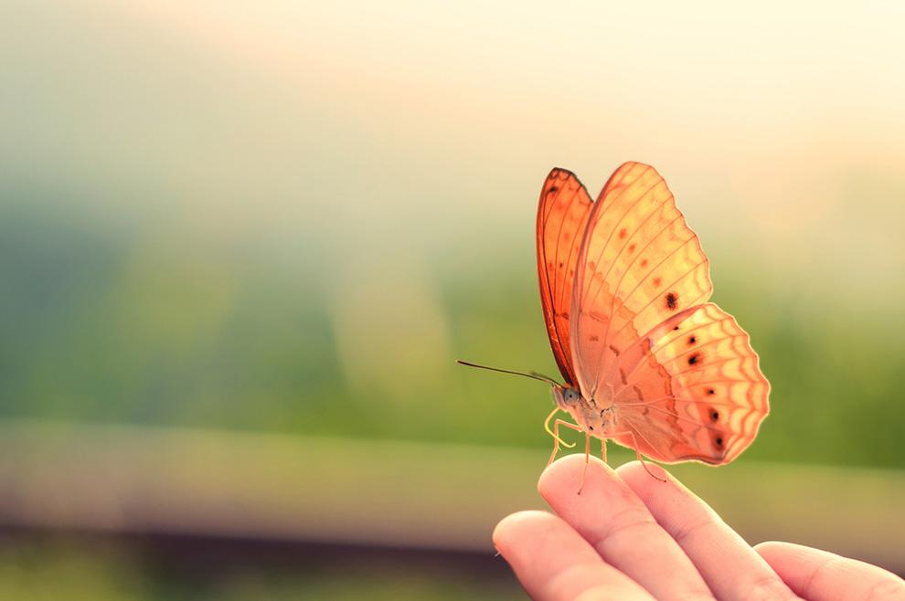 Zašto je važno ostati strpljiv u prijelaznim životnim fazama?