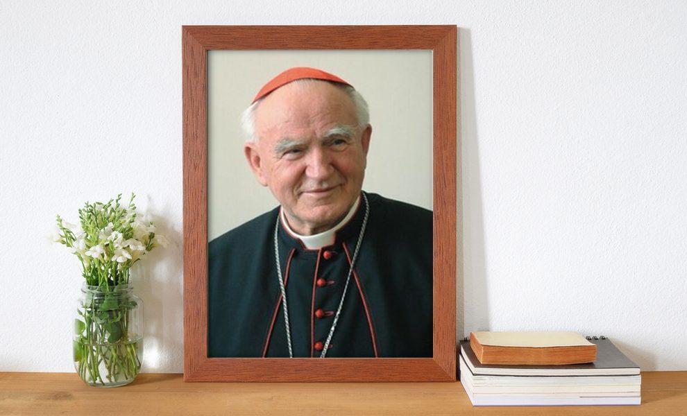 Sluga Bozji Franjo Kuharic Zagrebacki Nadbiskup I Kardinal Book Hr