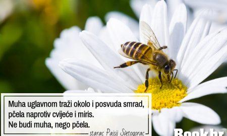 Ne budi muha nego pčela