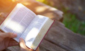 Dnevna misna čitanja