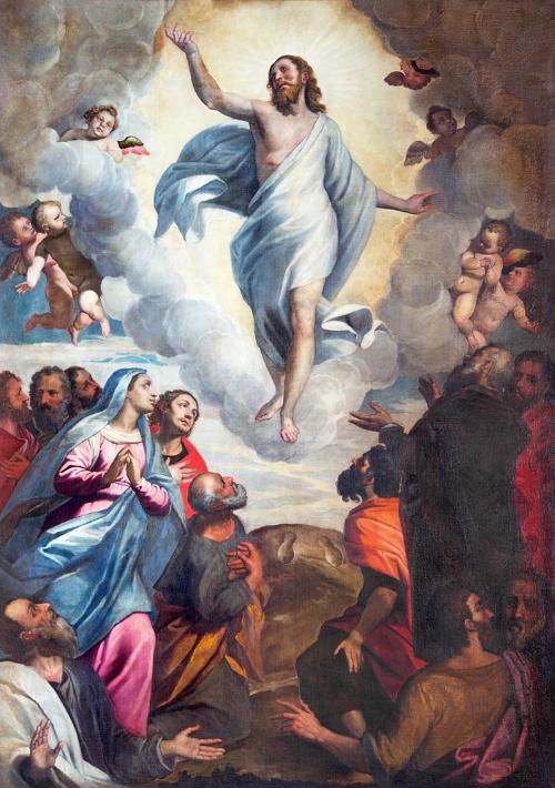 Slika u crkvi Santa Maria del Carmine slikara Bernardina Gandina (1587 – 1651).