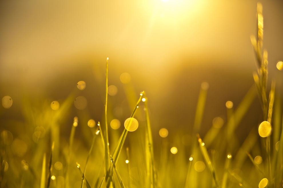 Razumiješ li značenje najdragocjenijeg dara koji nam je nebeski Otac dao