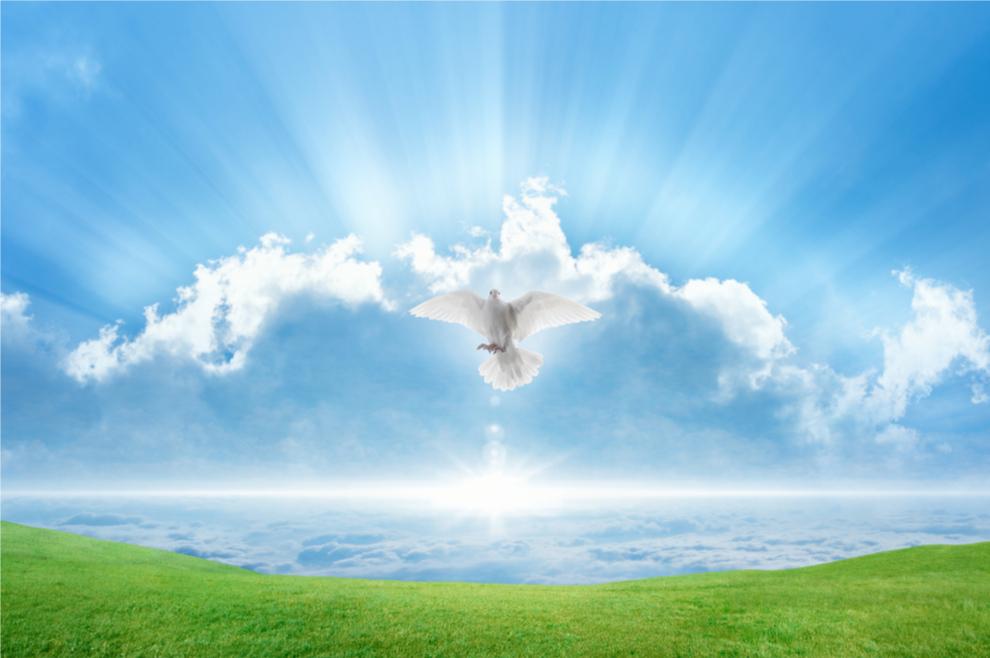 Vjerujem da mi je Duh Sveti, kojemu sam molila devetnicu, to jutro šapnuo nešto o sebi