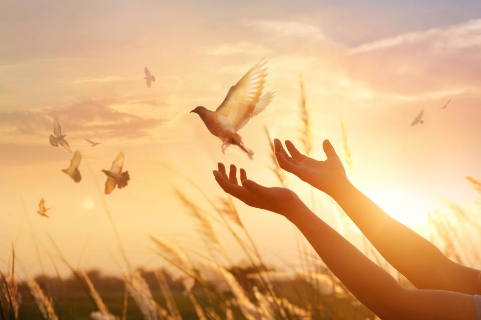 """Što molimo kad u """"Vjerovanju"""" kažemo """"(Vjerujem u) ... oproštenje grijeha…"""""""