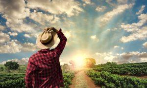 Načelo sjetve i žetve životni zakon koji vrijedi i za vjernike i za nevjernike