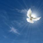 Kako nas vodi Duh Sveti