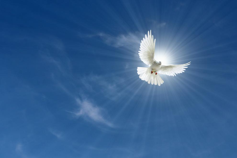 Kako nas vodi Duh Sveti - Book.hr