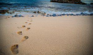 Stope u pijesku
