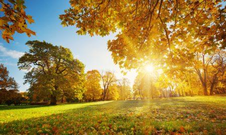 Što danas načiniš, u vječnosti ćeš uživati