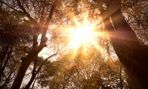 OHRABRENJE Kada se nađeš u životnoj krizi, ne moj odustati…