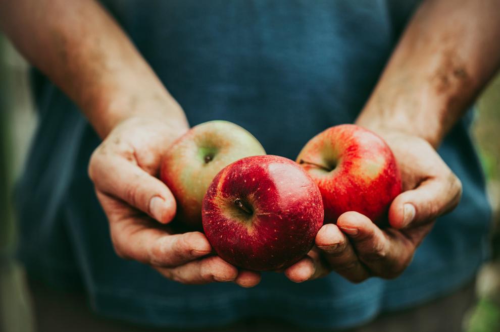 ARIZMA UMNAŽANJA HRANE Ovaj je svetac mogao stvoriti voće i povrće izvan sezone, ili počastiti bocom vina dvadeset i pet osoba