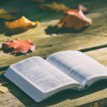 Vlč. Dražen Radigović govori o 14 plodova koje donosi čitanje Božje riječi