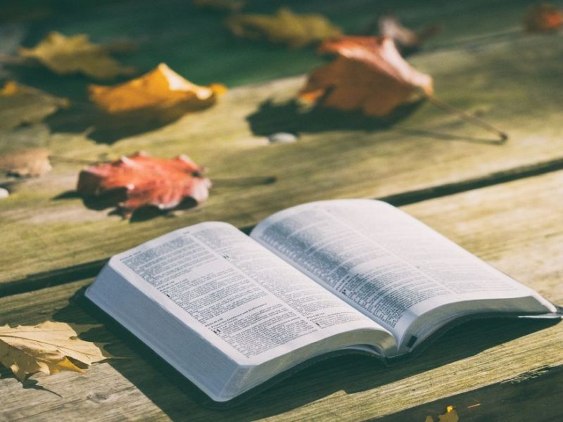 bible-1868070_1280