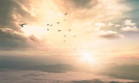 Augustyn Pelanowski: Za Boga nebo bez tebe više nije nebo