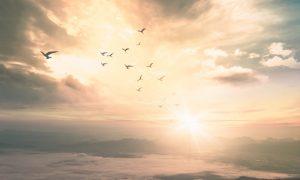 Hoćemo li svi biti jednako sretni u nebu