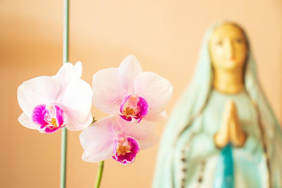 Kada je imala 12 godina, ukazala joj se Djevica Marija: 'O čemu razmišljaš? Ja sam Marija, Isusova majka i majka svih ljudi. Nemoj u to sumnjati!'