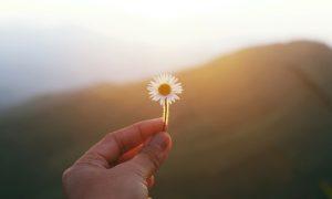 Kako se odmoriti kada se osjećamo umornima od života, od neprestanog dokazivanja da vrijedimo, da budemo priznati, prihvaćeni, voljeni?