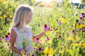 little-girl-2516578_1280