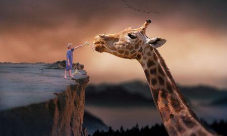 Kako nas snovi vode iz pameti u srce