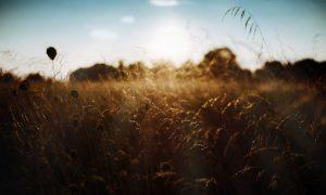 VIDEO Samo instrumental, 60 minuta duhovne glazbe za odmor i molitvu