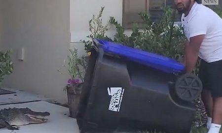 VIDEO Pred kućnim pragom uhvatio aligatora u kantu za smeće
