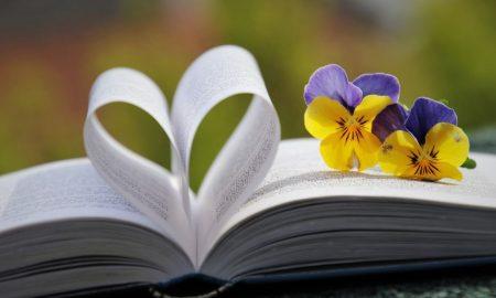 Kako se vratiti u čitateljsku formu ili kako je uopće steći