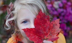 VIDEO IDEJA: Zabavite svoje mališane s lišćem